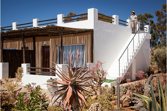 Safaris Down South - Inverdoorn - Ambassador Chalet
