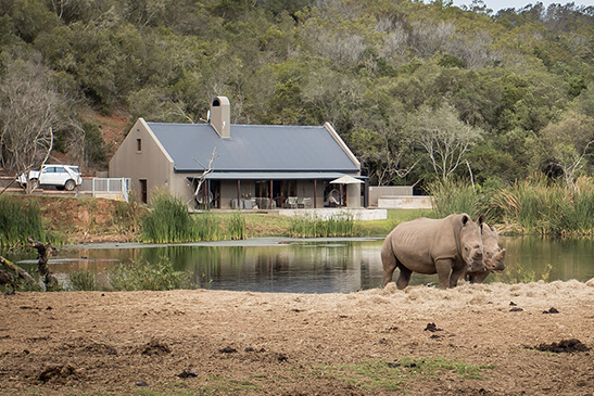 botlierskop-game-reserve-luxury-bush-villas (1)