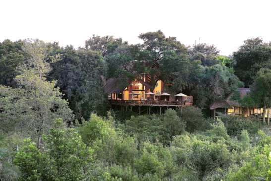 Londolozi Varty Camp banner
