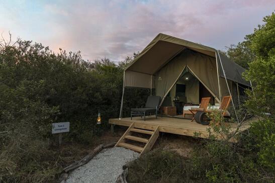 eastern-cape-safaris6