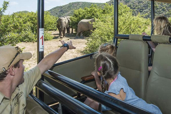 shamwari-game-reserve-riverdene-family-lodge (1)