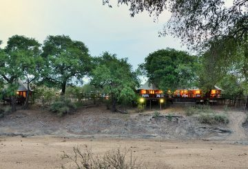 Hamiltons Tented Camp banner