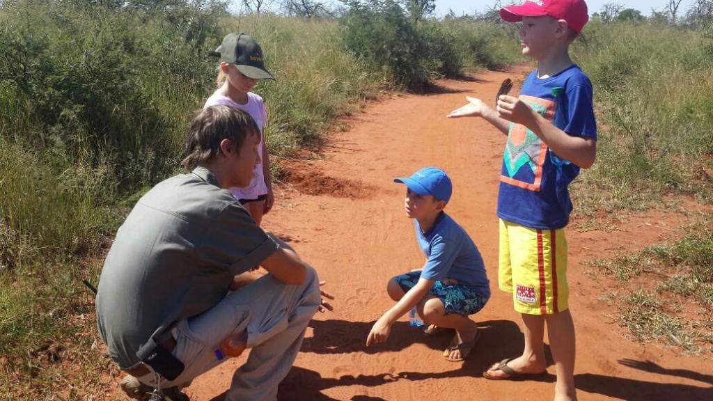 Fun activities for kids in safari