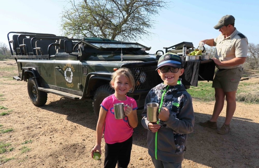 treasure safari