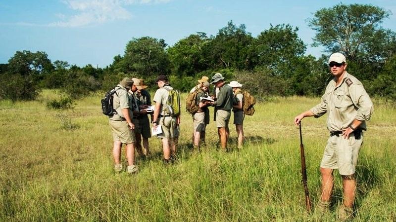 Safari safety tips