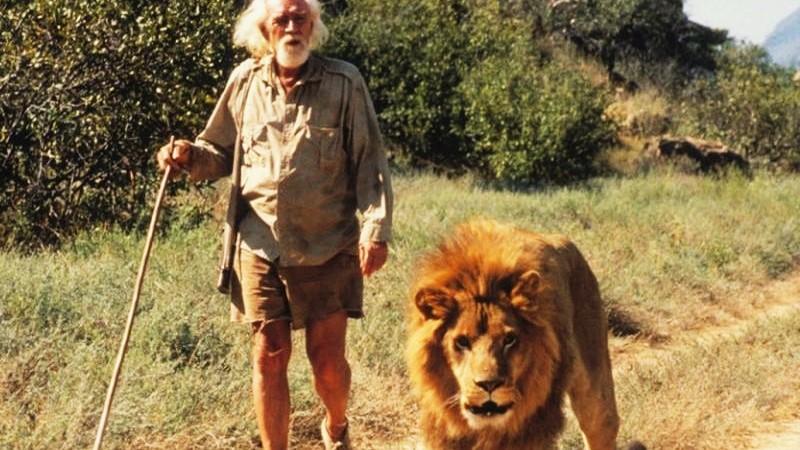 Safari films