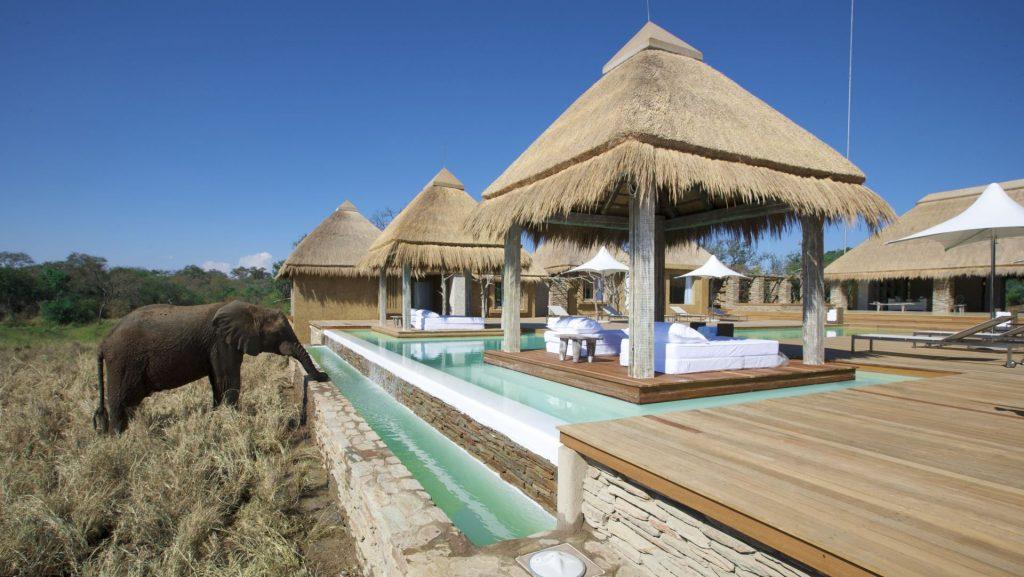 big 5 luxury safari lodge South Africa